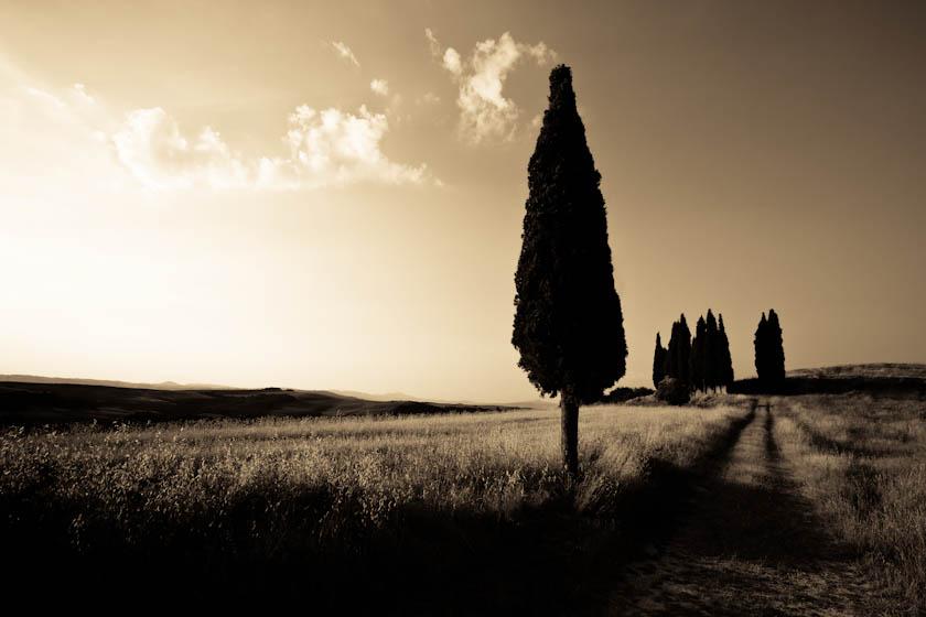 16_Elledge_100720_Italy_1398