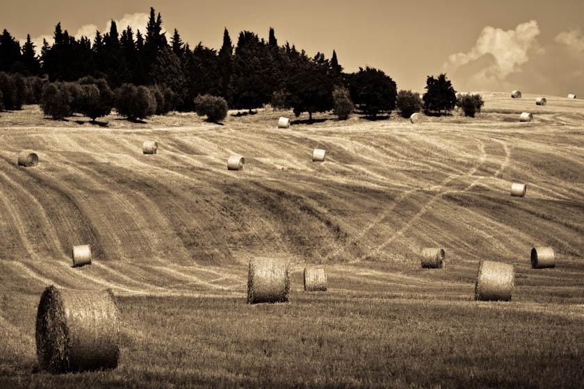 29_Elledge_100720_Italy_1427