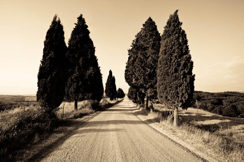 36_Elledge_100720_Italy_1403